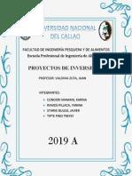 PROYECTOS F.docx