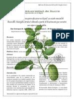 Articulo de No Alimentaria ( Extraccion de Aceite de Limoncillo Aplicado en La Elaboracion de Crema)
