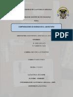 Informe de Bobinas
