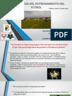 TEORIA Y PRACTICA DEL CONOCIMIENTO DEPORTIVO progresion y efectividad.pptx