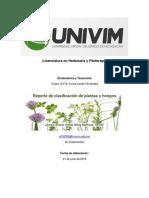 Reporte de Clasificación de Plantas y Hongos