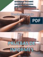 derechoprobatorio-130410090233-phpapp02.pptx
