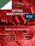 sistema hematopoyetico.pptx