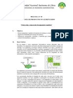 Práctica 05.TPNA.2019-I.docx