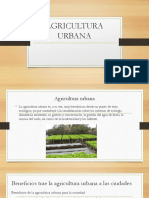 Agricultura Urbana.pptx