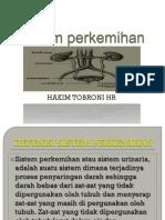 SISTEM_PERKEMIHAN.pptx