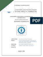 INFRAESTRUCTURA DE R EDES.docx