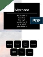 Myxozoa-aisyah.pptx