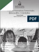 pruebas-formativas-pre-agosto-septiembre-octubre.pdf