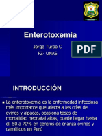 Enterotoxemia.ppt