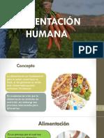ALIMENTACIÓN HUMANA PPT.pptx
