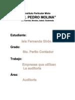 QUE EMPRESAS UTILIZAN LA AUDITORIA.docx