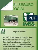 imss-presentacion.ppt