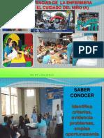 2.- Competencias de la Enfermera en el Cuidado de Atención.pptx