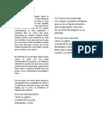 Verso libre.docx