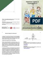 cromosoma x.pdf