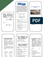 TRIPTICO DE ASENATAMIENTOS INMEDIATOS.docx
