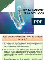 Mecanismos de Evolucion