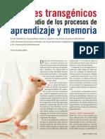menteycerebro, Delgado-Garcia 2009