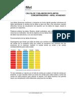 CÁLCULOS  Y BALANCES-AVANZADO.pdf