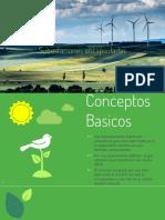 encapsuladas rev.pdf.pptx