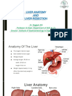 Liver Anatomy and Resection