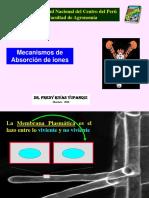 6. Mecanismos de Absorción de Iones ORIGINAL