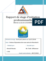 rapport final stage STEP pdf.pdf