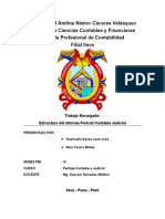 ESTRUCTURA DE INFORME PERICIAL CONTABLE JUDICIAL.docx