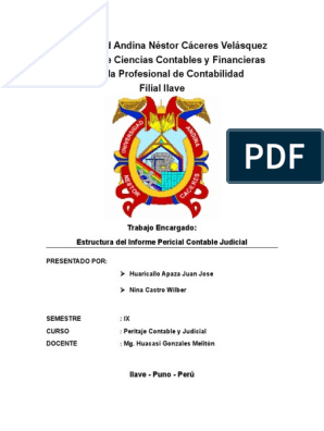 Estructura De Informe Pericial Contable Judicial Docx