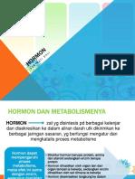 HORMON-1.pptx