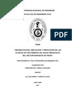 tarrillo_dc.pdf