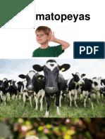 Onomatopeyas.pptx