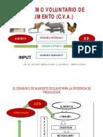 consumo-voluntario-2018-ii-modo-de-compatibilidad.pdf