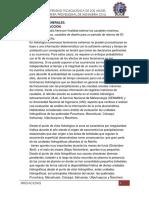Estudio Hidrologico 2019-1