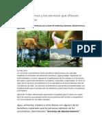 Los Ecosistemas y Los Servicios Que Ofrecen_ Algunos Datos