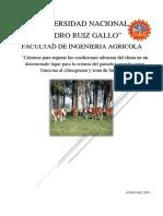 Diseño Rural Criterios