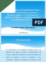Aplicación de Bioproductos a Semillas de Triticum (1)