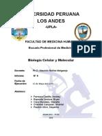Informe 06 Lab Biologia PROTEINAS Y LIPIDOS