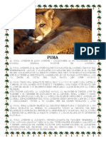 Puma.docx