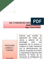 ROL Y FUNCIÓN del perito.pptx