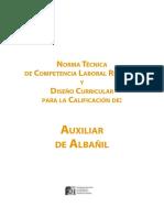 DISEÑO CURRICULAR PARA auxiliar_albanil