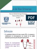 infeccindevasurinarias-130827203713-phpapp02