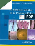 LA DIABETES MELLITUS EN LA PRACTICA CLINICA.pdf