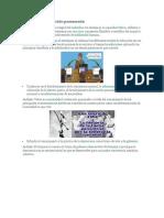 Fines de La Educación Panameña