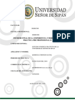 Informe Final Sayra
