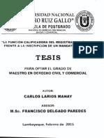 Calificacion Registral - Setencias Judiciales Tesis