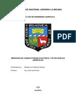 INFORME FINAL DE RIEGOS.docx
