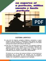 SISTEMA_LINFATICO.pptx