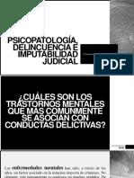 Psicopatología, Delincuencia e Imputabilidad Judicial